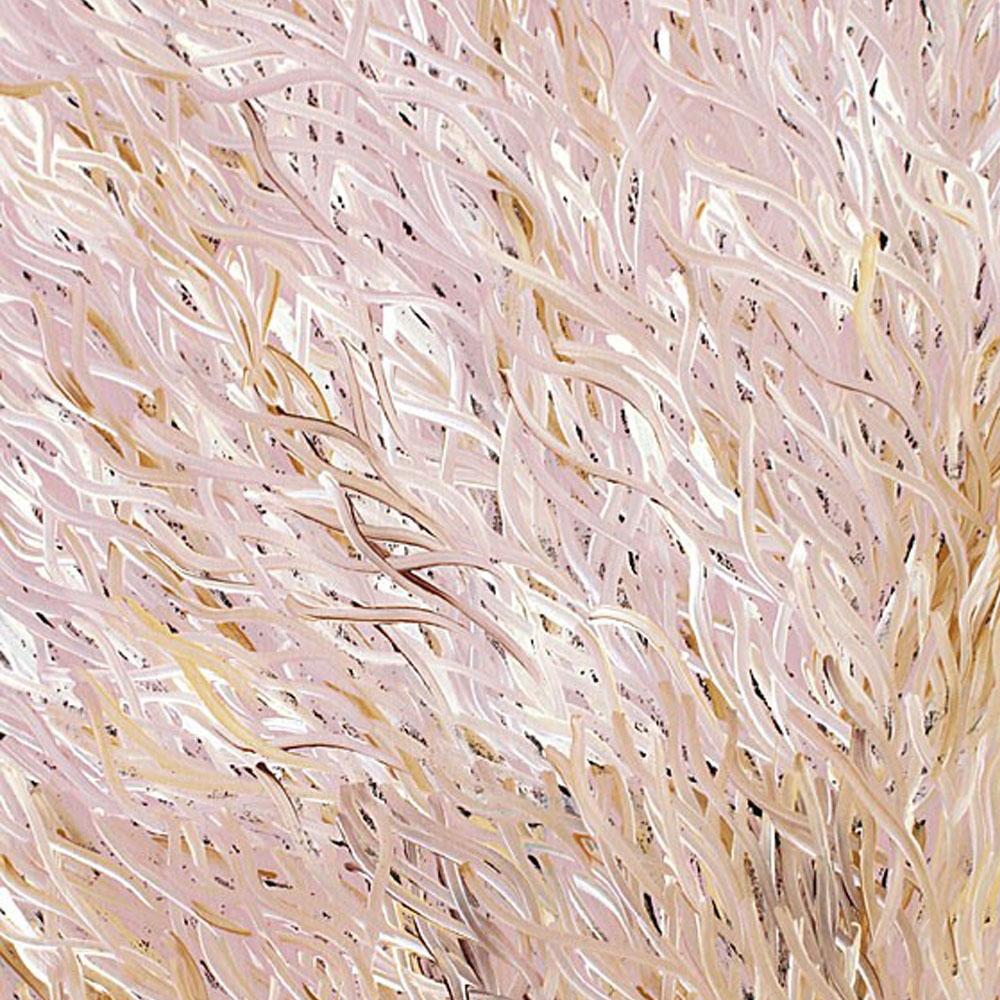 barbara weir-grass seed white -peinture-aborigene-tema-galerie-paris