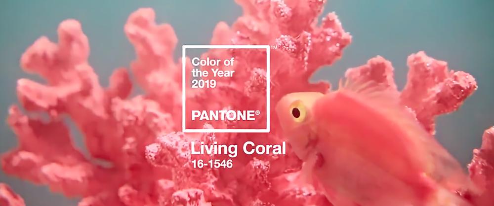 Tema-Galerie-Pantone-Living-Coral